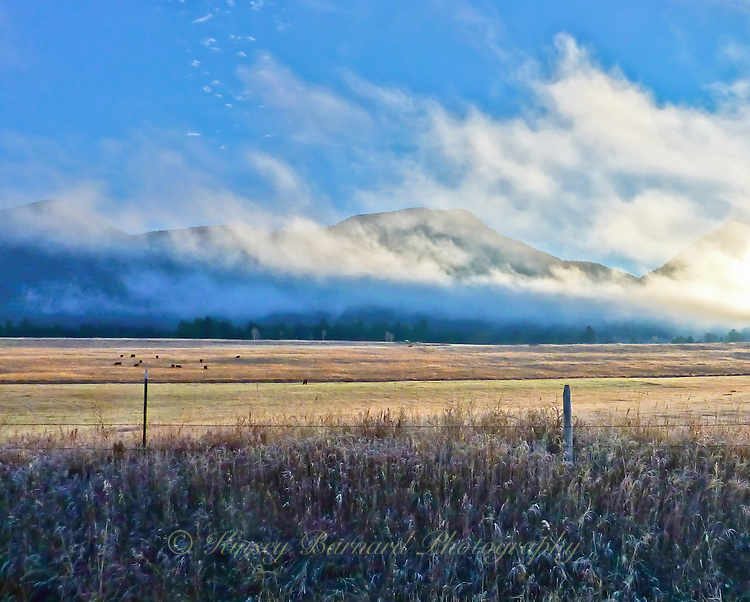 The sun, already far to the south, rising in fall over a Montana cattle ranch, clouds moving swiftly by. A classic Montana landscape.