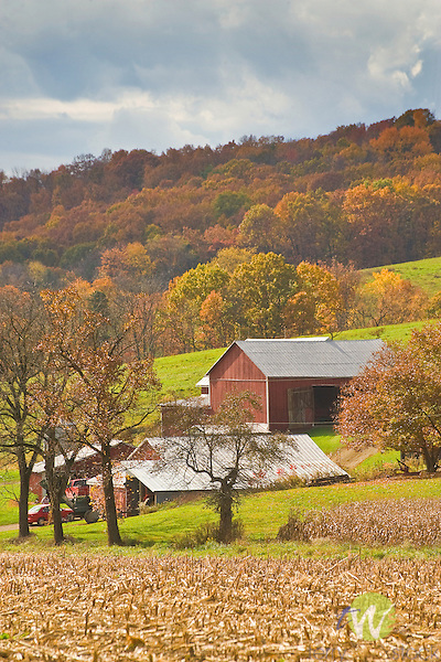 Farm and barn in autumn.