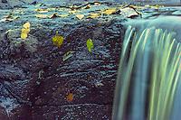 Autumn Cascade, MN