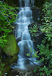 Idaho, North Central, Clearwater National Forest. Tumble Creek Falls.