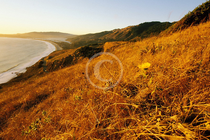 California, Stinson Beach, View from hillside at sunset