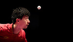 Men's Singles - Seamaster Qatar 2016 ITTF World Tour Grand Finals