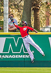 9 March 2013: Washington Nationals outfielder Denard Span in action during a Spring Training game against the Miami Marlins at Space Coast Stadium in Viera, Florida. The Nationals edged out the Marlins 8-7 in Grapefruit League play. Mandatory Credit: Ed Wolfstein Photo *** RAW (NEF) Image File Available ***