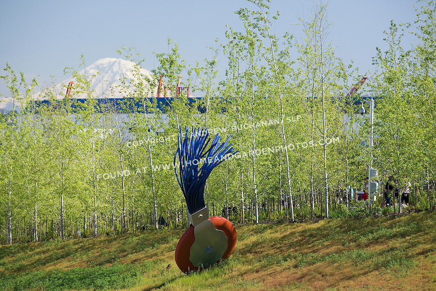 """""""Typewriter Eraser, Scale X"""" by Claes Oldenburg and Coosje van Bruggen sits in the West Meadow section of Seattle's new Olympic Sculpture Park.  Seen from the north looking south, the sculpture is backed by a maturing forest of native aspen trees in the Grove, the towering orange cranes of the Port of Seattle abuot 3-1/2 miles away, and snow-capped Mt. Rainier some 60 miles distant.   SAM's Olympic Sculpture Park, Seattle, WA."""