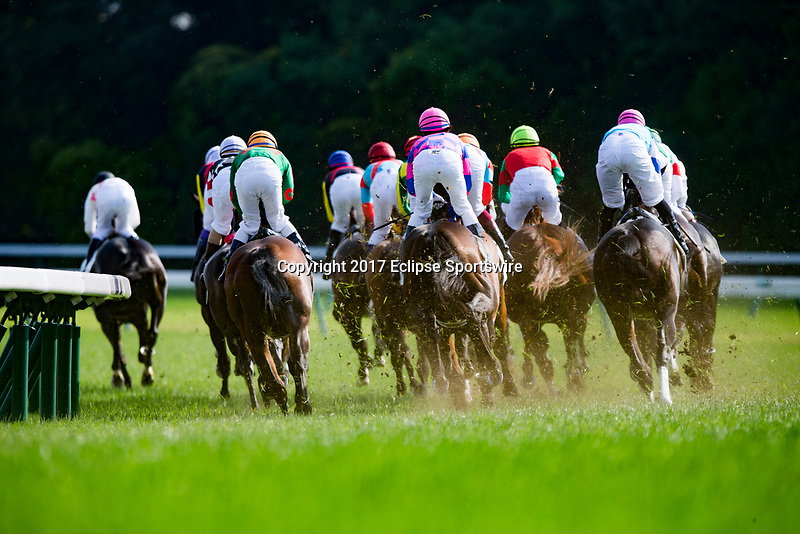 FUCHU,JAPAN-MAY 28: 1st turn in the Japanese Derby at Tokyo Racecourse on May 28,2017 in Fuchu,Tokyo,Japan (Photo by Kaz Ishida/Eclipse Sportswire/Getty Images)