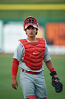 Palm Beach Cardinals catcher Jeremy Martinez (13) during a game against the Clearwater Threshers on April 14, 2017 at Spectrum Field in Clearwater, Florida.  Clearwater defeated Palm Beach 6-2.  (Mike Janes/Four Seam Images)