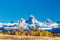 Golden aspens of autumn decorate Teton Valley Idaho below the towering Grand Teton Range.