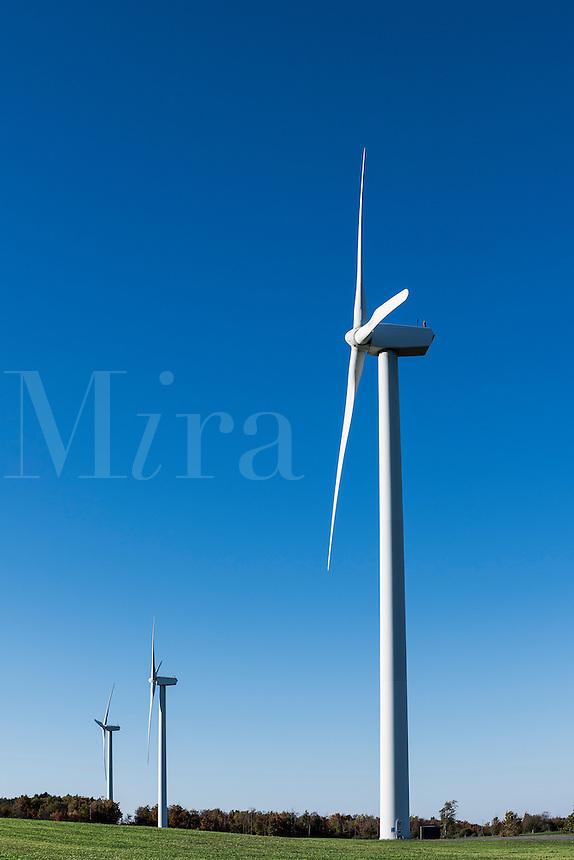 Wind farm, Canastota, New York, USA