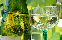 A cool and refreshing glass of white wine and bottle.  Close up