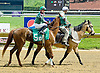 Distortedredhead at Delaware Park on 5/12/12