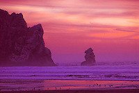 &quot;MORRO MAGIC&quot;<br />