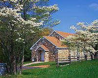 Blue Ridge Parkway, VA<br /> Blossoming dogwood trees frame the Bluemont Presbyterian Church (National Register of Historic Places) near Ararat, VA