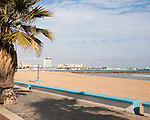 Palm trees sandy beach sea Melilla autonomous city state Spanish territory in north Africa, Spain