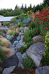 The view of the office from the hillside, drought tolerant garden