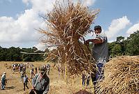 Leusden-  De Stichting Behoud Oude Werktuigen organiseert de jaarlijkse oogstdag op landgoed Den Treek. Dorsen.