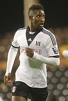 Fulham's Moussa Dembele scorer of a brace of goals against Newcastle