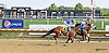Hailey's Star winning at Delaware Park on 8/25/14