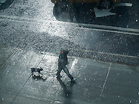 An unprepared dog walker in a torrential summer rain storm in the Chelsea neighborhood of New York on Tuesday, July 7, 2015.  (© Richard B. Levine)