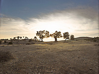 OR_LOCATION_45176