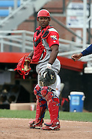 September 6 2008:  Catcher Luis Ramon Arzeno of the Williamsport Crosscutters, Class-A affiliate of the Philadelphia Phillies, during a game at Russell Diethrick Park in Jamestown, NY.  Photo by:  Mike Janes/Four Seam Images