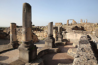 The House of Orpheus, named after one of its mosaics of Orpheus playing his harp, with circular baths lined with mosaics, Volubilis, Northern Morocco. Volubilis was founded in the 3rd century BC by the Phoenicians and was a Roman settlement from the 1st century AD. Volubilis was a thriving Roman olive growing town until 280 AD and was settled until the 11th century. The buildings were largely destroyed by an earthquake in the 18th century and have since been excavated and partly restored. Volubilis was listed as a UNESCO World Heritage Site in 1997. Picture by Manuel Cohen