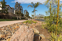 The rocky landscaping along the Harbor Boulevard Cornerstone Bike Trail in Costa Mesa, California under a blue sky with partial clouds.  The rocks flow along the trail like a dry streambed, framed with other plants.  The landscape architecture work on the project was done by David Volz Design.