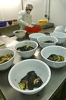FRANCIA- Bordeaux - Allevamenti di storioni e produzione di caviale francese in Aquitania- Ditta Sturgeon, 1° produttore francese di caviale - allevamenti a l'Ecloserie de Guyenne (Saint Seurin sur l'Isle en Gironde), laboratorio di trasformazione a Saint Genis de Santonge