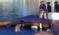 Trainers and tourists with dolphins at the Hilton Waikoloa, Big Island of Hawaii