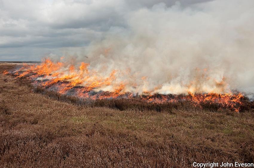 Gamekeepers burning heather, Arkengarthdale Moor, North Yorkshire
