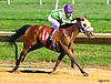 Fine Hesst winning at Delaware Park on 8/22/16<br /> bred by Cre Run Enterprises Dahess - Full of Finesse