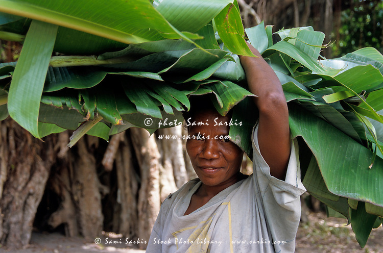 Woman holding banana tree leaves on her head, Sulphur Bay village, Tanna, Vanuatu.