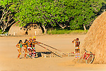 &Iacute;ndio Kalapalo fotografando a dan&ccedil;a do Ritual Kuarup na Aldeia Aiha no Parque Ind&iacute;gena do Xingu | Kalapalo indian photographing dance of the Kuarup Ritual at Aiha Village in the Xingu Indigenous Park<br /> <br /> LOCAL: Quer&ecirc;ncia, Mato Grosso, Brasil <br /> DATE: 07/2009 <br /> &copy;Pal&ecirc; Zuppani