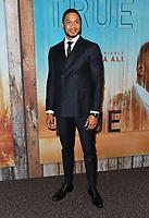 "10 January 2019 - Hollywood, California - Ray Fisher. ""True Detective"" third season premiere held at Directors Guild of America. Photo Credit: Birdie Thompson/AdMedia"