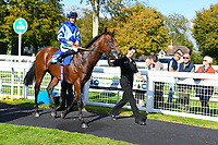 Winner of The PKF Francis Clark EBF Novice Stakes Div 2 Stormwave ridden by Harry Bentley and trained by Ralph Beckett is led into the Winners Enclosure during Afternoon Racing at Salisbury Racecourse on 3rd October 2018