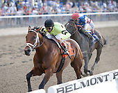 The fastest horse in the land? That's Quality Road zipping to victory over Musket Man in the Grade 1 Met Mile at Belmont Park on May 26.