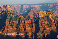 Last light on the north rim on an evening hike. Love that golden glow on the layers of the canyon.