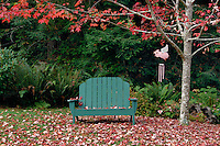 Adirondack chair<br />