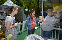 NWA Democrat-Gazette/BEN GOFF @NWABENGOFF<br /> Ryan Renfrow (from left) and Maggie Nickel of Bentonville pet Madonna, a puppy up for adoption, in the arms of Lydia Hart with Heavenly Paws Rescue Thursday, May 4, 2017, at the Pedigree Puppy Village at Compton Gardens during the Bentonville Film Festival. Animal rescue groups from Northwest Arkansas will have puppies up for free adoption at the Puppy Village throughout the festival.
