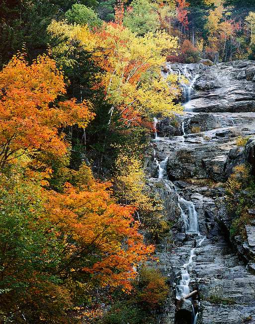 Silver Cascade; Crawford Notch State Park; White Mountains; New Hampshire
