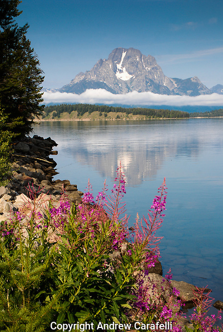 Mount Moran, a thin layer of fog still hovering near its base, rises majestically above  Jackson Lake in Grand Teton National Park, Wyoming.