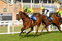 Winner of The Gift Of Sight Handicap  Silvington  ridden by Imogen Mathias and trained by Mark Loughnane during Evening Racing at Salisbury Racecourse on 3rd September 2019
