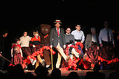 """The University of Chicago Quadrangle Club Revels performed an original play titled """"Any Resemblance"""" this weekend at the Quadrangle Club located at 57th and Woodlawn."""