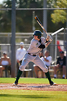 Dartmouth Big Green Ben Rice (9) bats during a game against the Omaha Mavericks on February 23, 2020 at North Charlotte Regional Park in Port Charlotte, Florida.  Dartmouth defeated Omaha 8-1.  (Mike Janes/Four Seam Images)