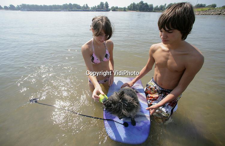 Foto: VidiPhoto..SLIJK-EWIJK - Gasten van camping De Steenoven in Slijk-Ewijk geven woensdag een hondje surfles in De Waal, de drukst bevaren rivier van Europa. Recreëren langs en zwemmen in de grote rivieren neemt ieder jaar toe, zeker nu steeds meer mensen in eigen land op vakantie gaan. Rijkswaterstaat waarschuwt echter om niet te gaan zwemmen in de rivieren omdat dit levensgevaarlijk is. Jaarlijks verdrinken er mensen door de sterke stroming of door onderkoeling. Dit jaar zijn er al diverse honden verdronken omdat ze werden aangezogen door vrachtschepen.