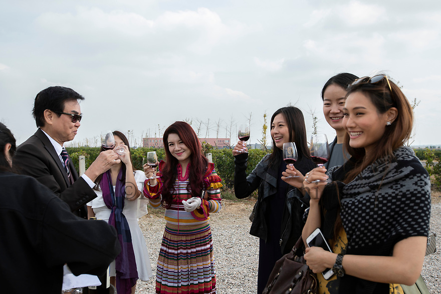 China - Ningxia - Raymond Wong Pak-ming(left), 72. Hong Kong film producer, playwright, director and actor enjoying a wine tasting session with other VIP guests during the opening ceremony of the Chateau. The grand opening of the Chateau Copower Jade, on the outskirts of Yinchuan. The 80-hectare-vineyard and the winery's modern structure cost 19 million euros and won the 2018 RVF Wine Design Award. <br />
