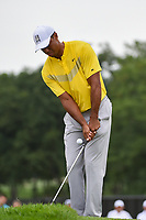 Tiger Woods (USA) chips on to 1 during Rd3 of the 2019 BMW Championship, Medinah Golf Club, Chicago, Illinois, USA. 8/17/2019.<br /> Picture Ken Murray / Golffile.ie<br /> <br /> All photo usage must carry mandatory copyright credit (© Golffile   Ken Murray)