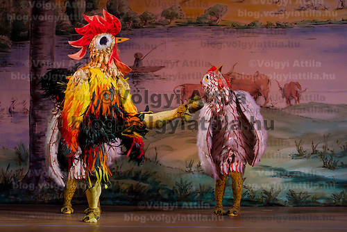 Dancers dressed as chickens perform. Hungarian National Ballet Company presents the dance piece La Fille Mal Gardee Choreographed by Sir Frederick Ashton in Hungary State Opera House,  Budapest, Hungary, Tuesday, 23. November 2010. ATTILA VOLGYI