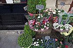 Flower shop on Rue Saint-Louis en L'ile, Ile Saint-Louis, Paris, France