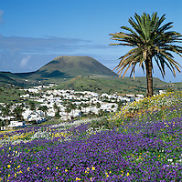 Spain (Lanzarote - Canary Islands)