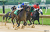 Shy Commander winning at Delaware Park on 7/30/16